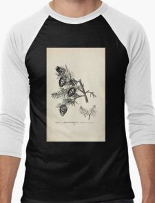 Southern wild flowers and trees together with shrubs vines Alice Lounsberry 1901 003 Carolina Hemlock T-Shirt