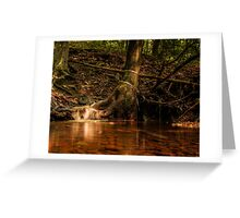 Beneath the Fallen Rain Greeting Card