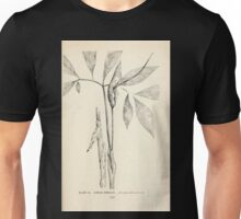 Southern wild flowers and trees together with shrubs vines Alice Lounsberry 1901 012 Green Dragon Unisex T-Shirt