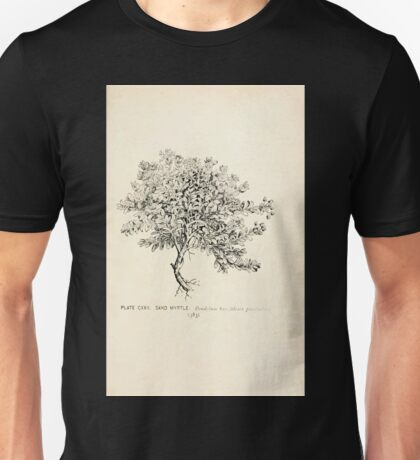 Southern wild flowers and trees together with shrubs vines Alice Lounsberry 1901 120 Sand Myrtle Unisex T-Shirt