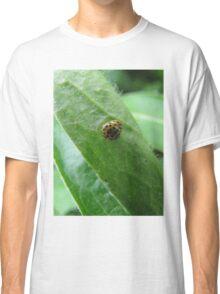 Yellow ladybugs in nature Classic T-Shirt