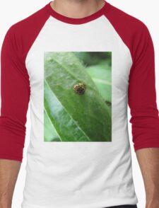 Yellow ladybugs in nature Men's Baseball ¾ T-Shirt