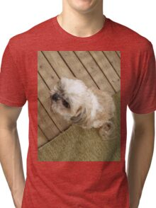 shih tzu look cool Tri-blend T-Shirt