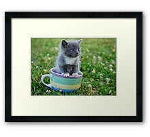 Tea Cup Framed Print