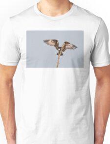 Balancing Act - Osprey T-Shirt