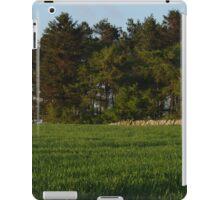 Scottish Countryside In Spring iPad Case/Skin