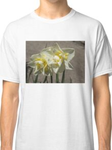 Pastel Yellow Spring - a Pair of Double Daffodils Classic T-Shirt