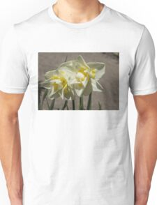 Pastel Yellow Spring - a Pair of Double Daffodils Unisex T-Shirt