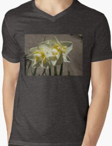 Pastel Yellow Spring - a Pair of Double Daffodils Mens V-Neck T-Shirt