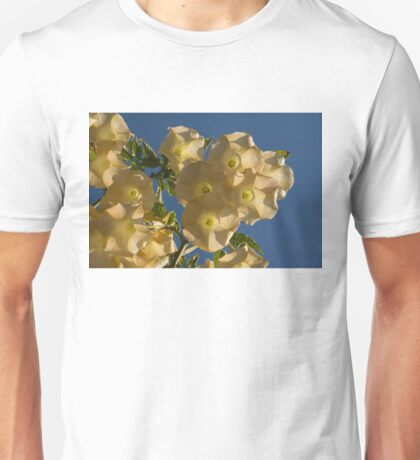 Angel Trumpets in the Sky Unisex T-Shirt