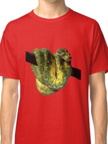 Green Tree Python Reptile Photography  Classic T-Shirt