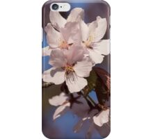 Pink Spring - Sunlit Blossoms and Blue Sky iPhone Case/Skin