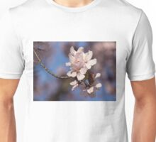 Pink Spring - Sunlit Blossoms and Blue Sky Unisex T-Shirt