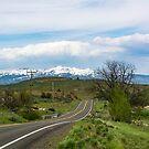 Southeastern Adams County, Idaho by Bryan D. Spellman
