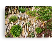 Orderly Mess - Impressions of a Rock Garden Canvas Print