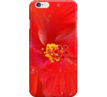 Hibiscous Chicago IL Mag Mile iPhone Case/Skin