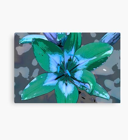 Photoshop Lily green Canvas Print