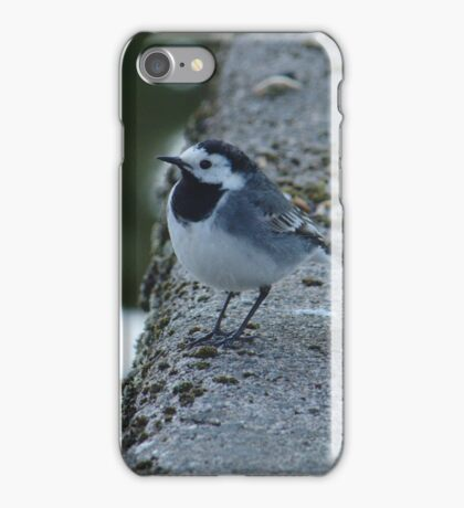 Wagtail At Riverside iPhone Case/Skin