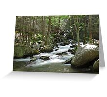 Cosby Creek Greeting Card