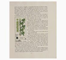 Etude-de-la-Plante-Maurice-Pillard-Verneuil-1903-120 Plant Study Botany Kids Tee
