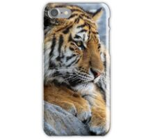 Big paws iPhone Case/Skin