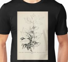 Southern wild flowers and trees together with shrubs vines Alice Lounsberry 1901 135 Four Winged Snowdrop Tree Unisex T-Shirt