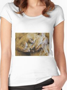 Chocolate Chip Cookie Women's Fitted Scoop T-Shirt