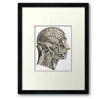 Anatomy Head Framed Print