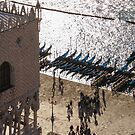 Doge's Palace - Long Shadows and Brilliant Waters From Above by Georgia Mizuleva