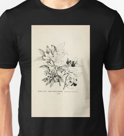 Southern wild flowers and trees together with shrubs vines Alice Lounsberry 1901 128 Hairy Huckleberry Unisex T-Shirt