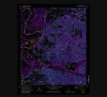 USGS TOPO Map Alabama AL Englewood 303761 1970 24000 Inverted T-Shirt