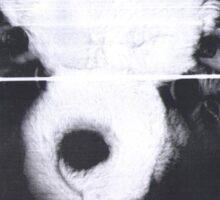 Teddy Bear On the Photocopier Sticker