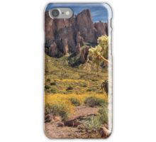 Superstition Mountain Cholla iPhone Case/Skin