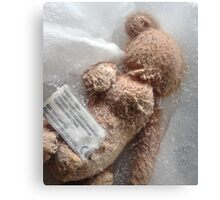 Frozen Teddy Bear #2 Canvas Print
