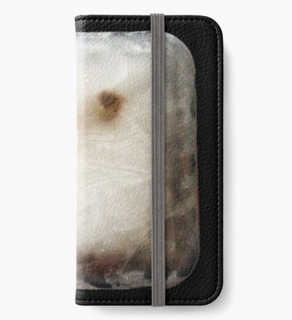 Frozen iPhone Wallet/Case/Skin