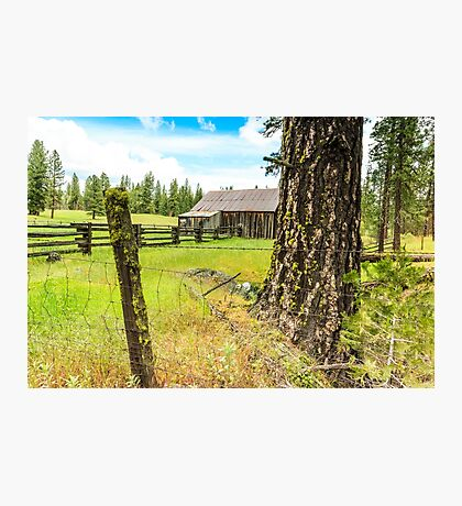 Old Barn in California Photographic Print