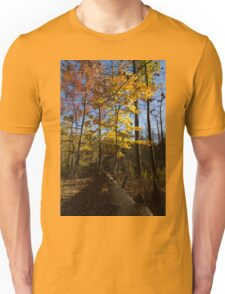 Of Fall and Fallen Giants - Autumn Forest in the Sunshine Unisex T-Shirt