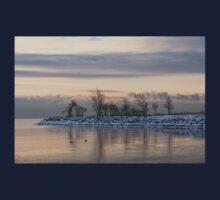Two Swans, Sleeping - Serene Winter Lake Scene Kids Tee