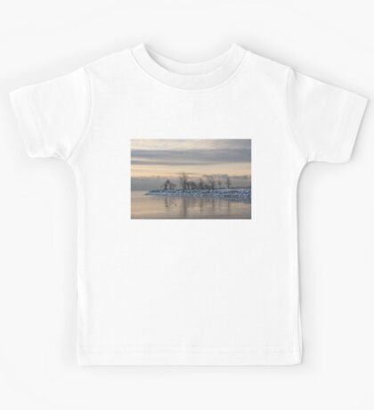 Two Swans, Sleeping - Serene Winter Lake Scene Kids Tee