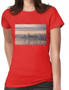 Two Swans, Sleeping - Serene Winter Lake Scene Womens Fitted T-Shirt