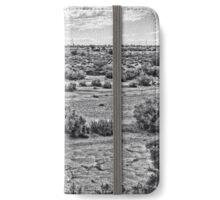 Dry wash Arizona iPhone Wallet/Case/Skin