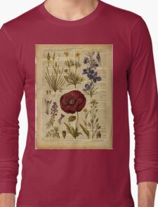 Botanical print, on old book page - flowers Long Sleeve T-Shirt