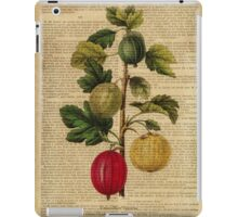 Botanical print, on old book page - gooseberry iPad Case/Skin