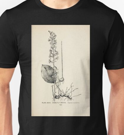 Southern wild flowers and trees together with shrubs vines Alice Lounsberry 1901 033 Crane Fly Orchid Unisex T-Shirt