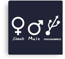Female, Male and Programmer  Canvas Print