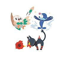 Starters Photographic Print