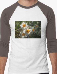 Sunny Side Up - Daffodils Blooming in a Fabulous Spring Garden Men's Baseball ¾ T-Shirt