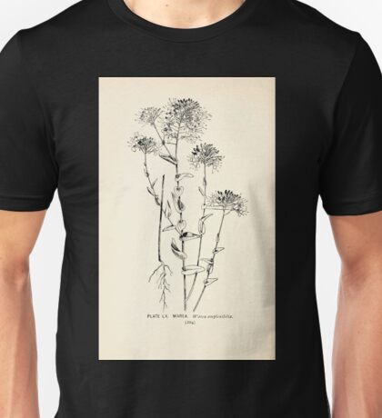 Southern wild flowers and trees together with shrubs vines Alice Lounsberry 1901 060 Warea Unisex T-Shirt