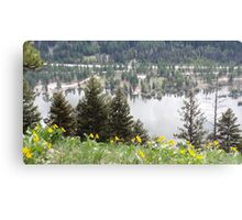 The View From Above Canvas Print