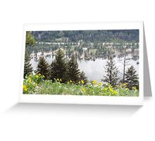 The View From Above Greeting Card